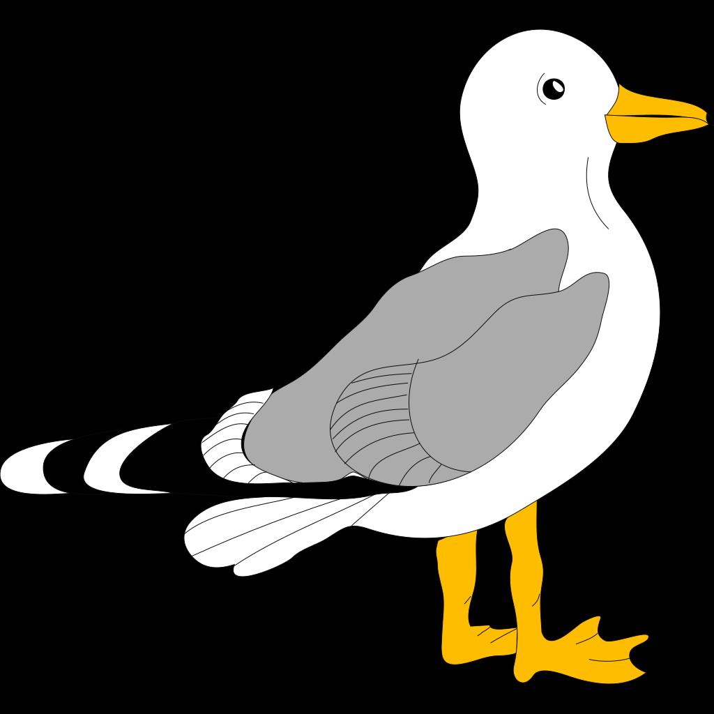 cartoon seagull png  svg clip art for web download clip seagull clipart black and white seagull clipart jpg