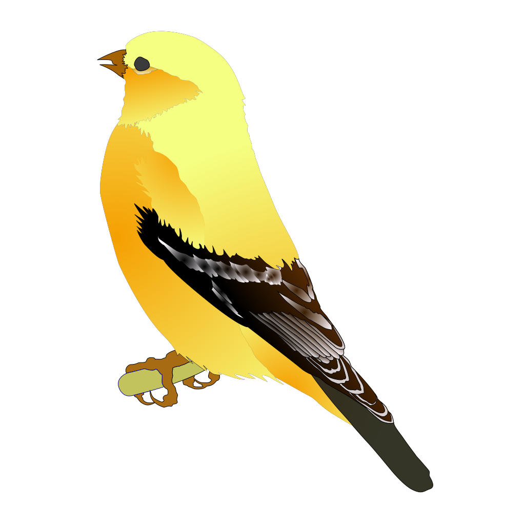 Gold Finch SVG Clip arts