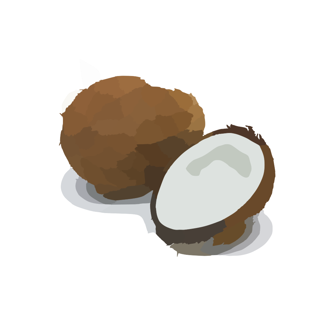 Coconut SVG Clip arts