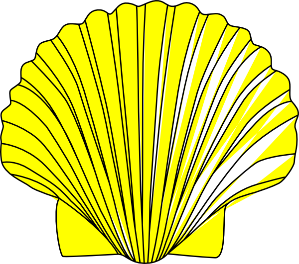 Shell.jpg SVG Clip arts