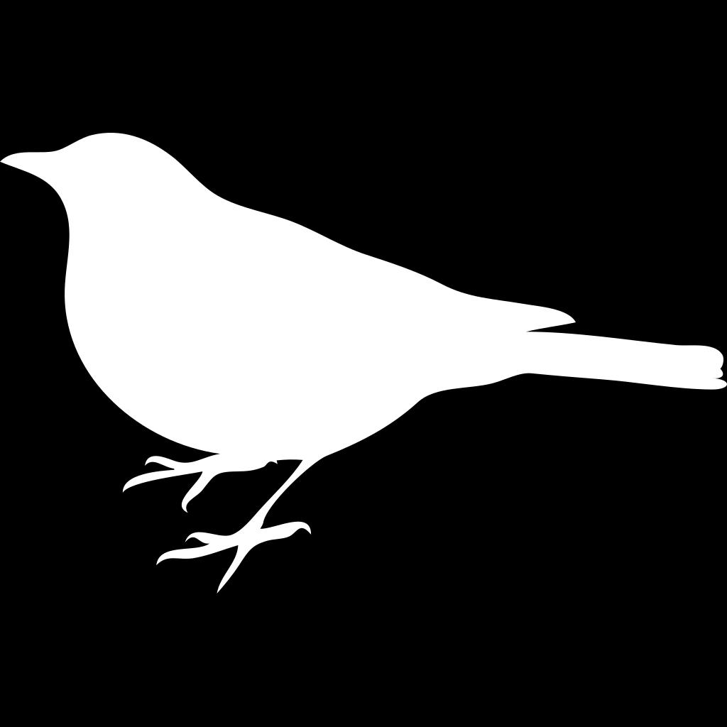 White Bird Black Back SVG Clip arts