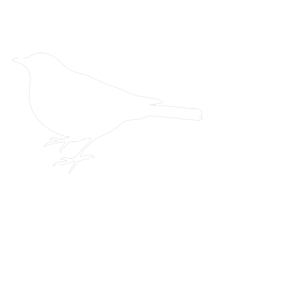 White Bird SVG Clip arts