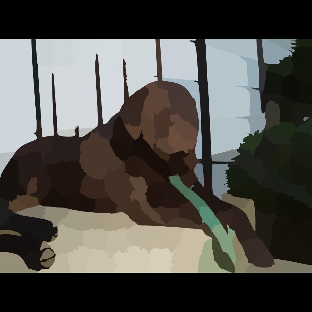 Blurred Pet Dog Photo SVG Clip arts