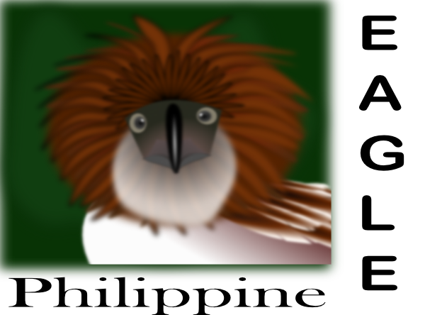 Philippine Eagle SVG Clip arts