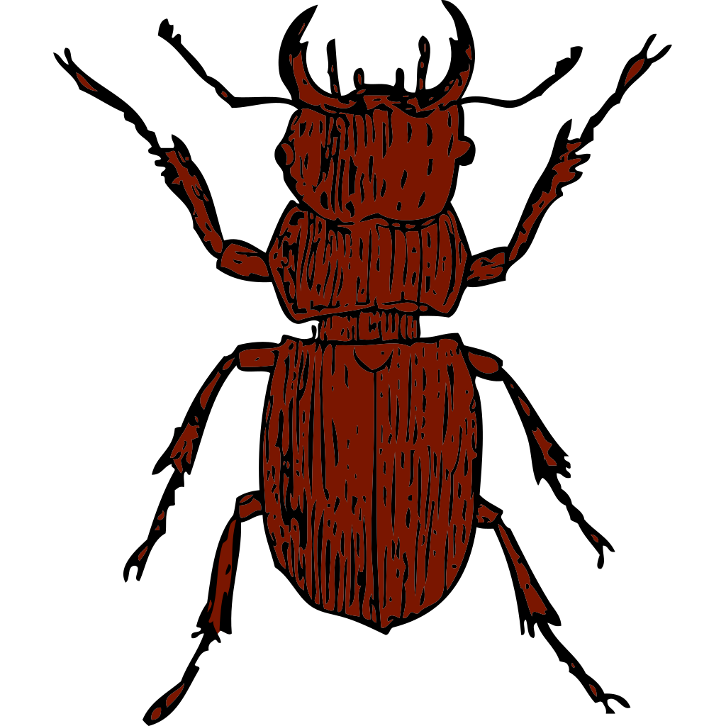 Brown Stag Beetle SVG Clip arts