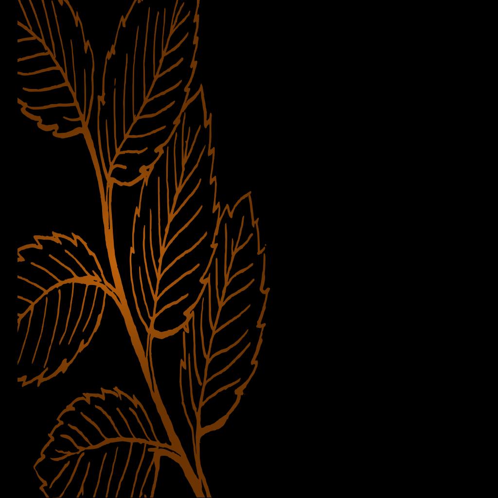 Leaves SVG Clip arts