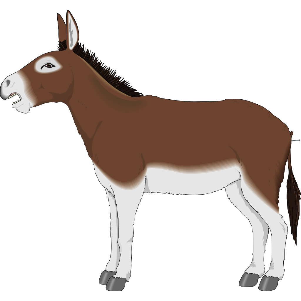 Brown And White Donkey Side View Clip Art