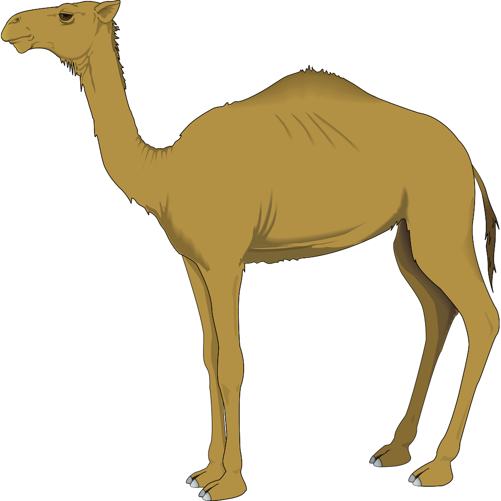 Brown Standing Camel SVG Clip arts