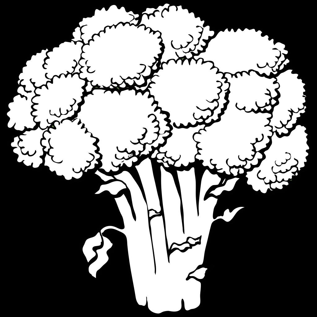 broccoli outline png svg clip art for web download clip art png icon arts broccoli outline png svg clip art for