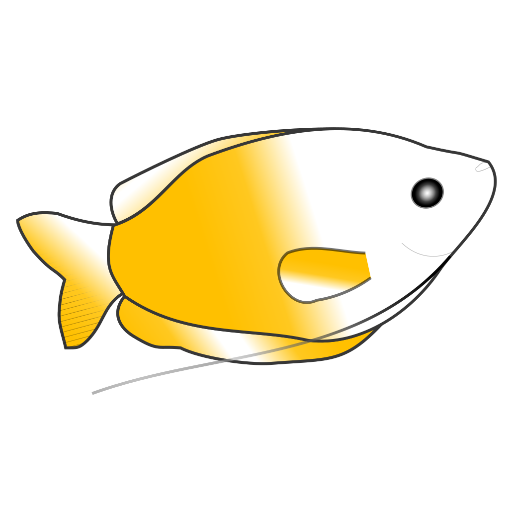 Yellow Gourami svg