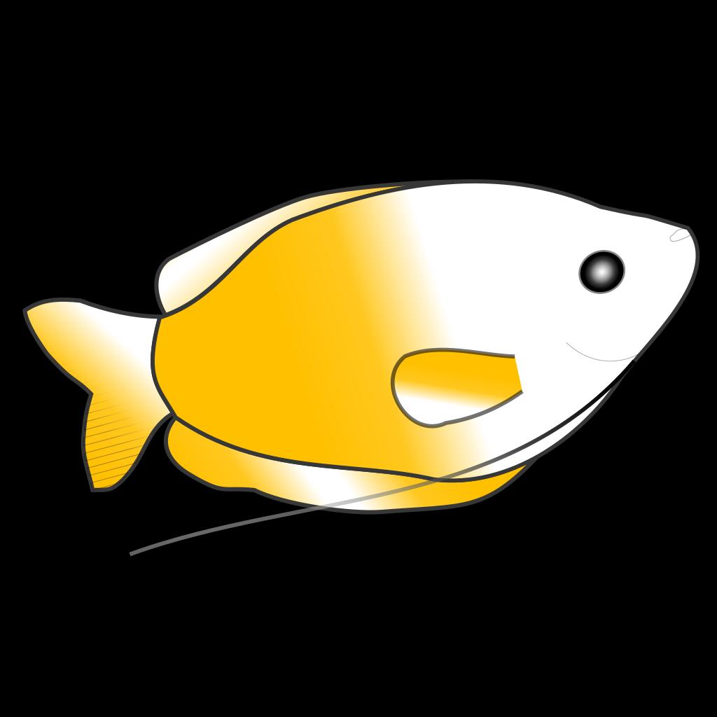Yellow Gourami SVG Clip arts