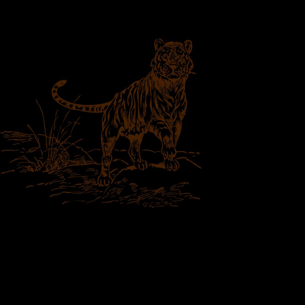 Tiger Brown SVG Clip arts