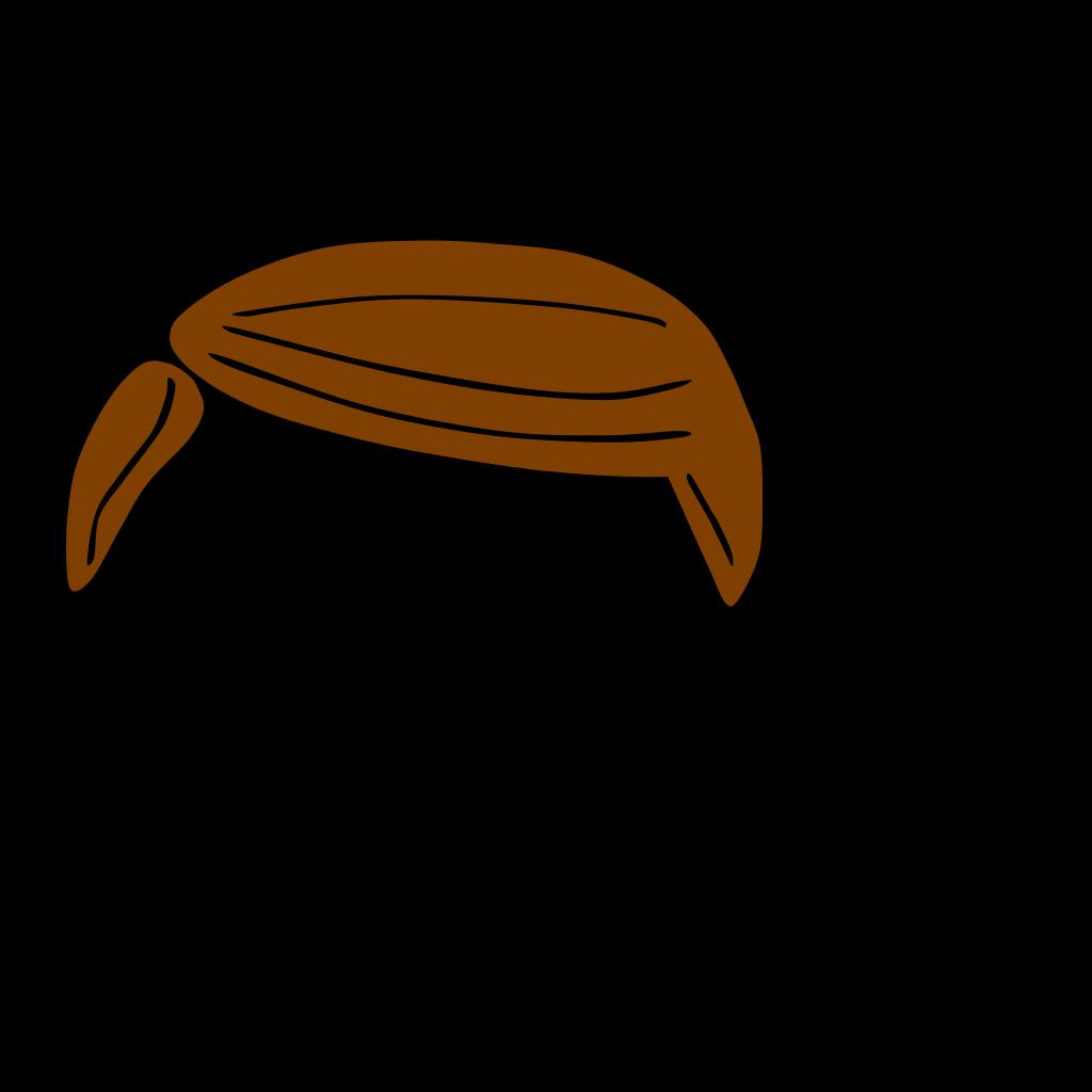 Plain Brown Hair SVG Clip arts
