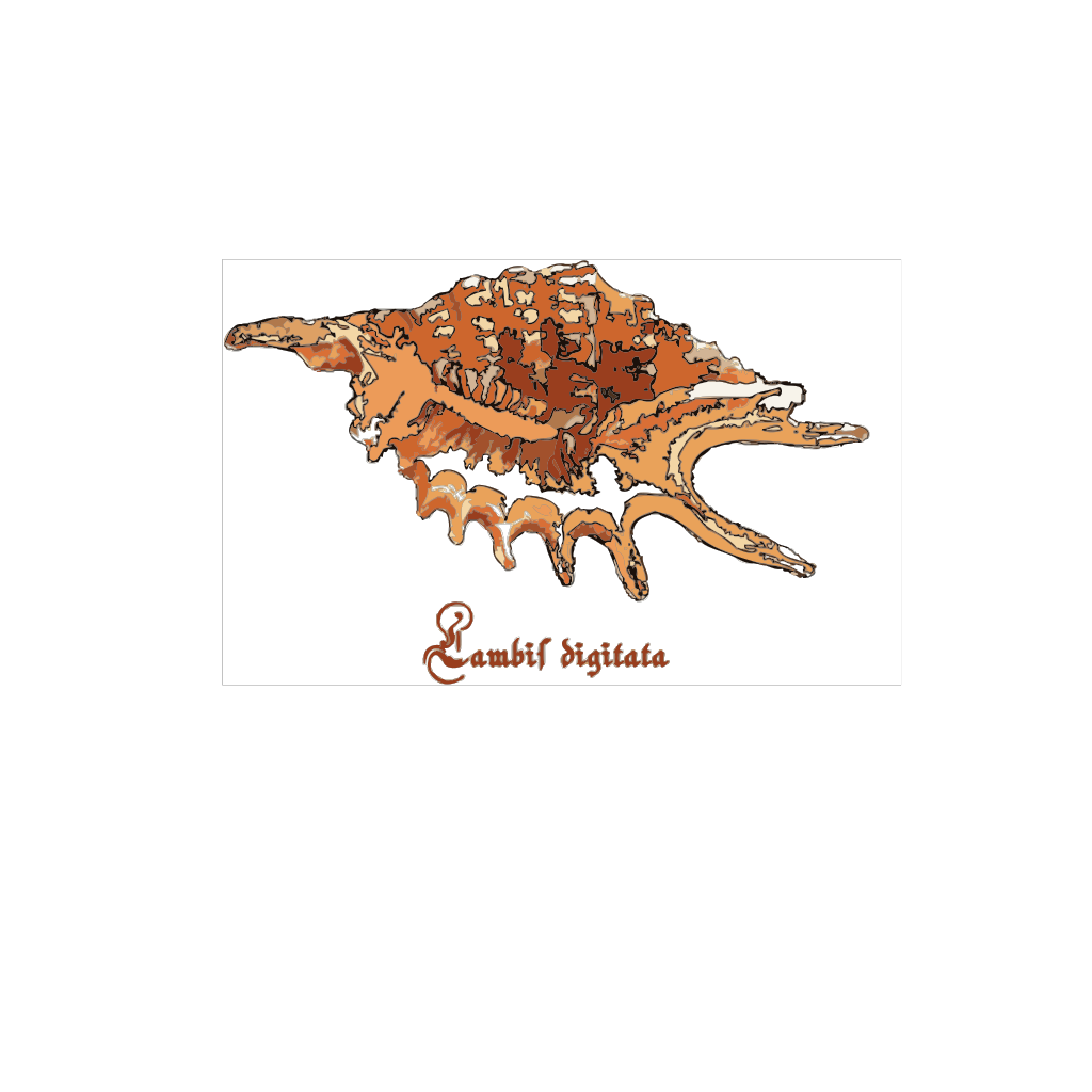 Sea Shell SVG Clip arts