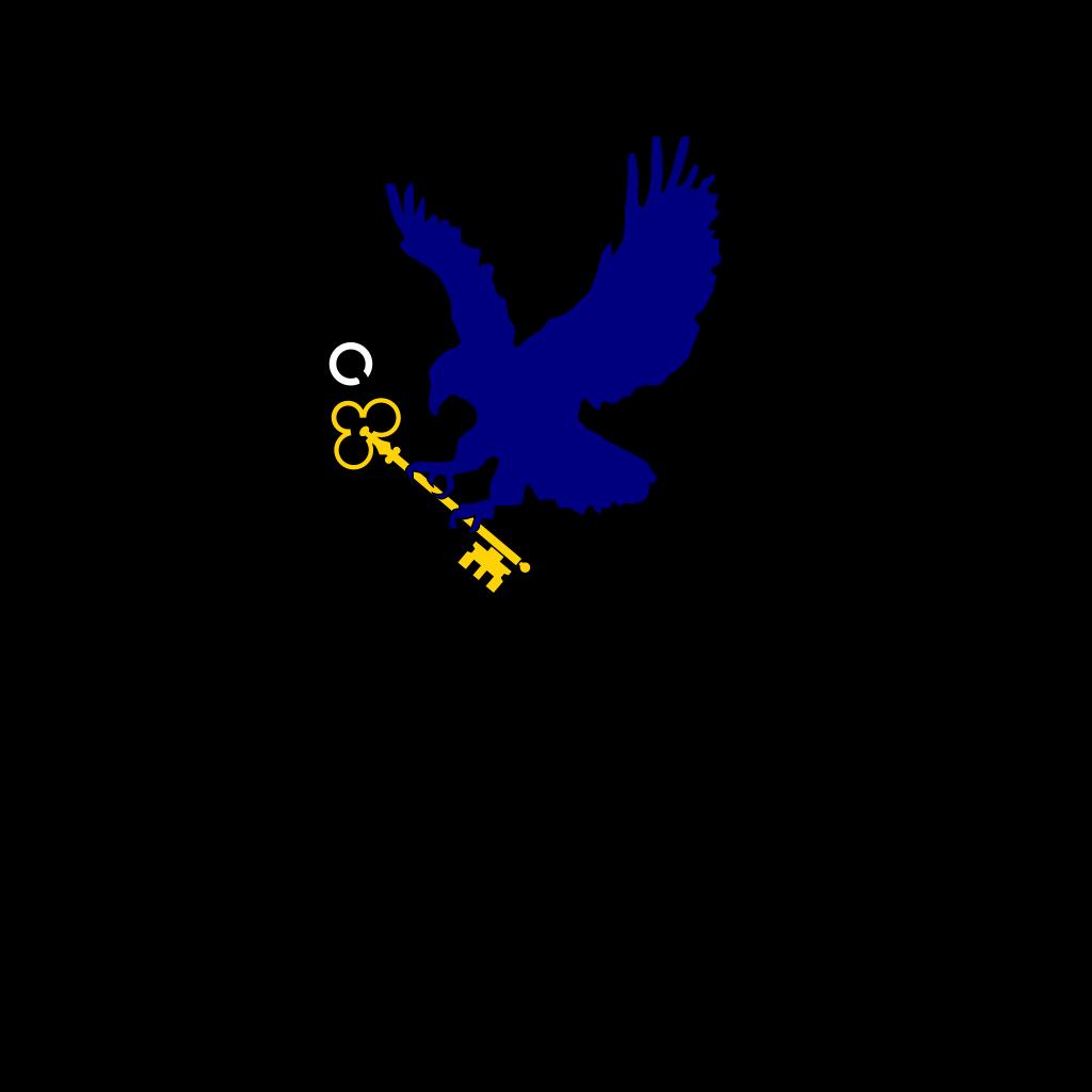 Bluehawkkey2 SVG Clip arts