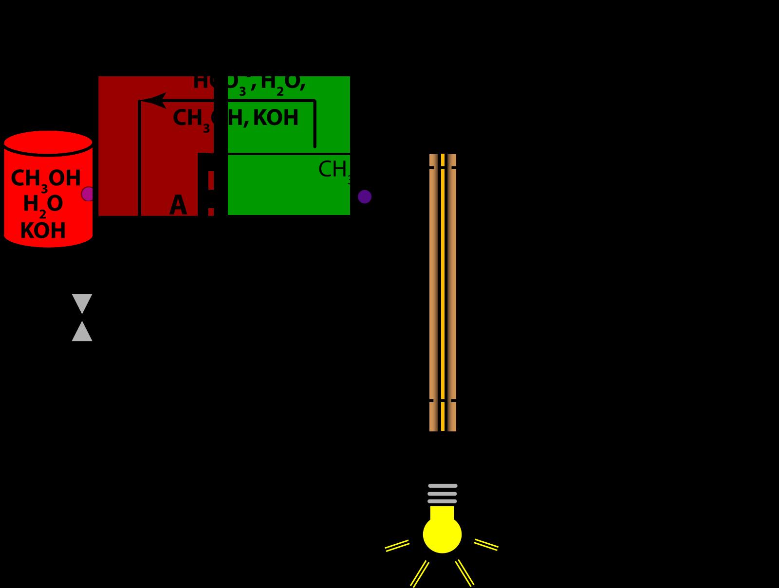 Prokarytoci Cell SVG Clip arts