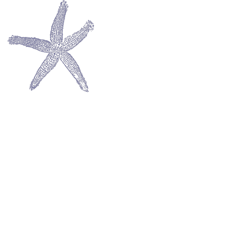 Dark Blue Starfish SVG Clip arts