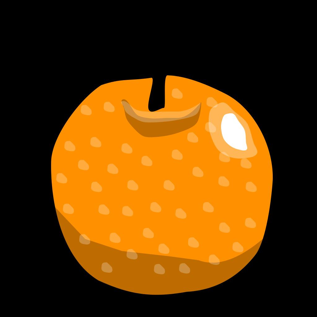 Branch Orange Blue SVG Clip arts
