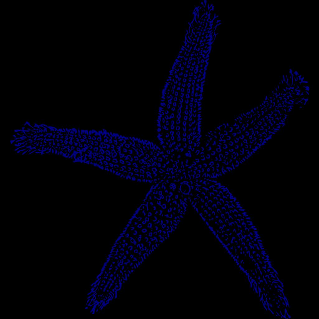 Maehr Starfish Wedding SVG Clip arts