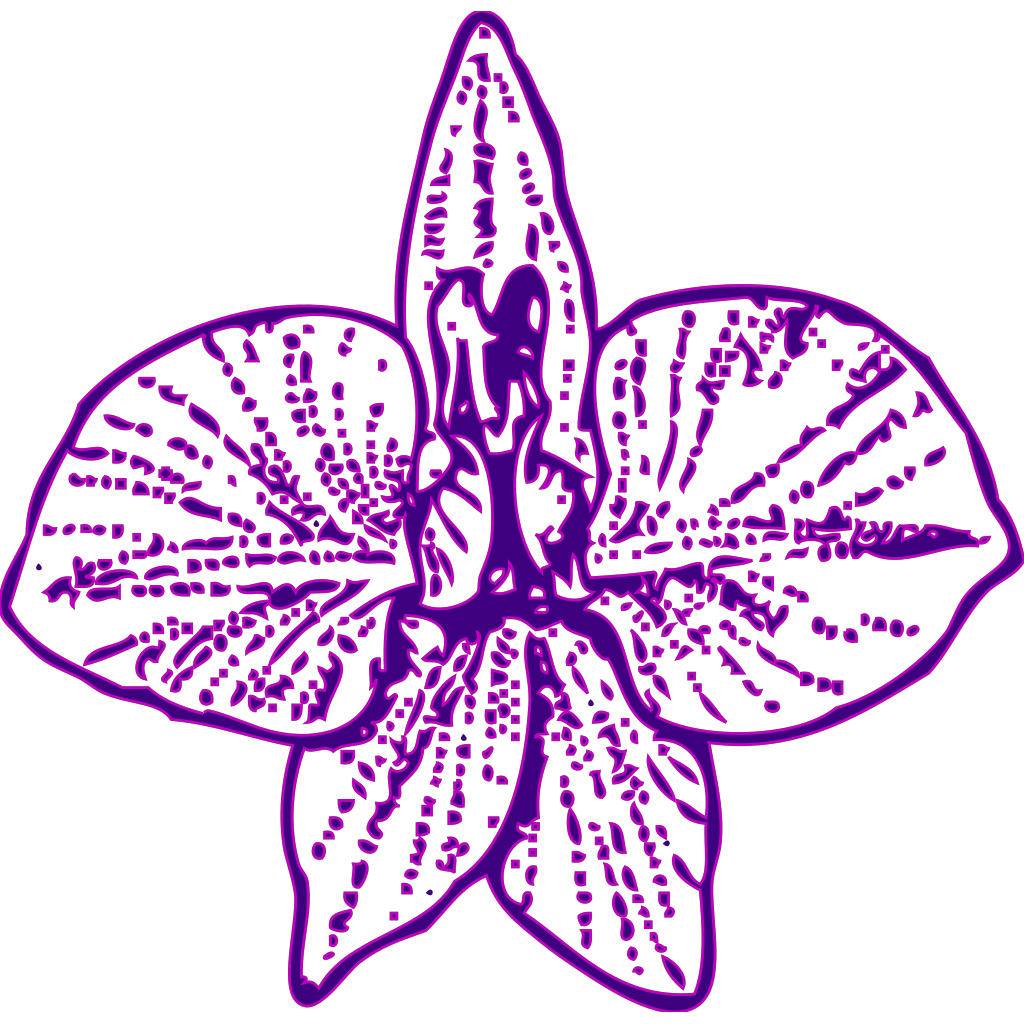 Blue Orchid Outline SVG Clip arts