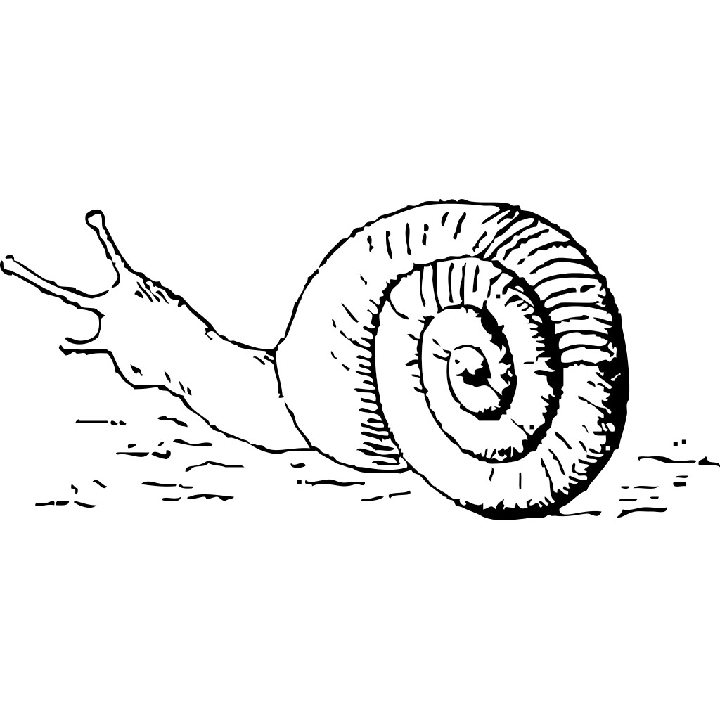 Snail 4 SVG Clip arts