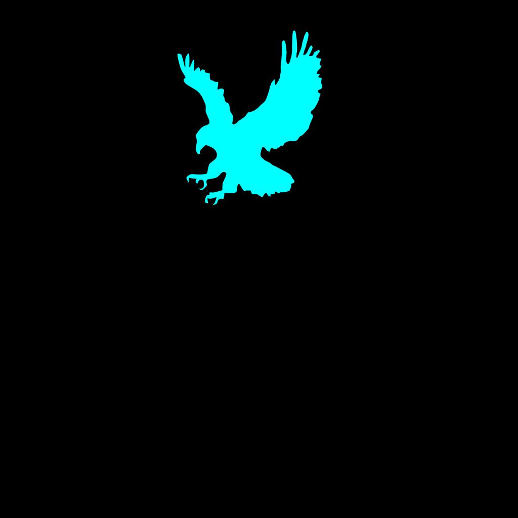 Eagle Bird 25 SVG Clip arts