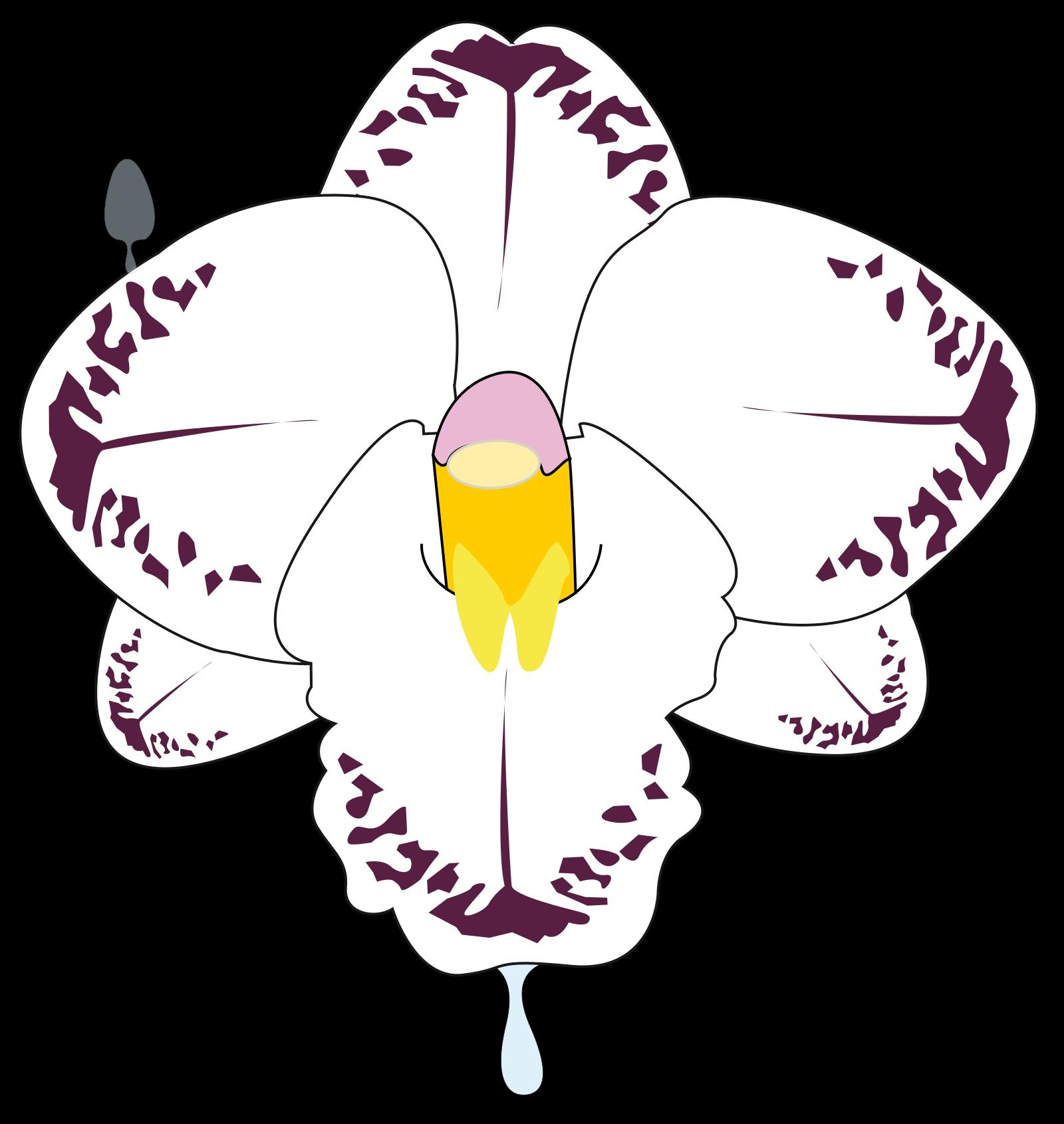 Fleur SVG Clip arts