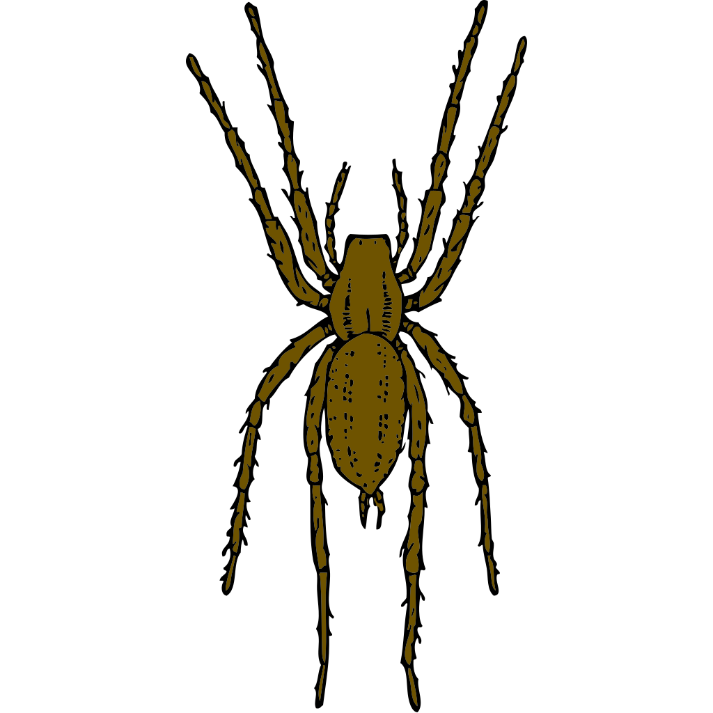 Brown Spider SVG Clip arts