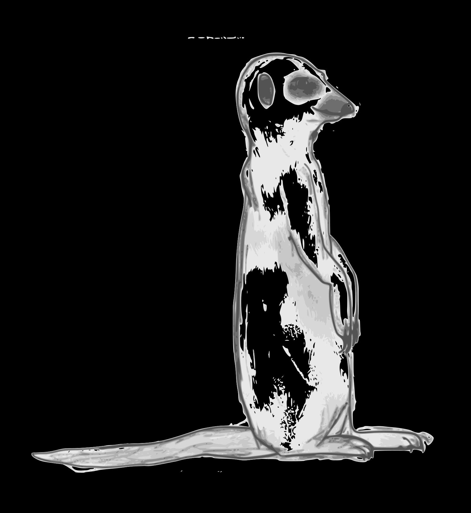 Meerkat SVG Clip arts