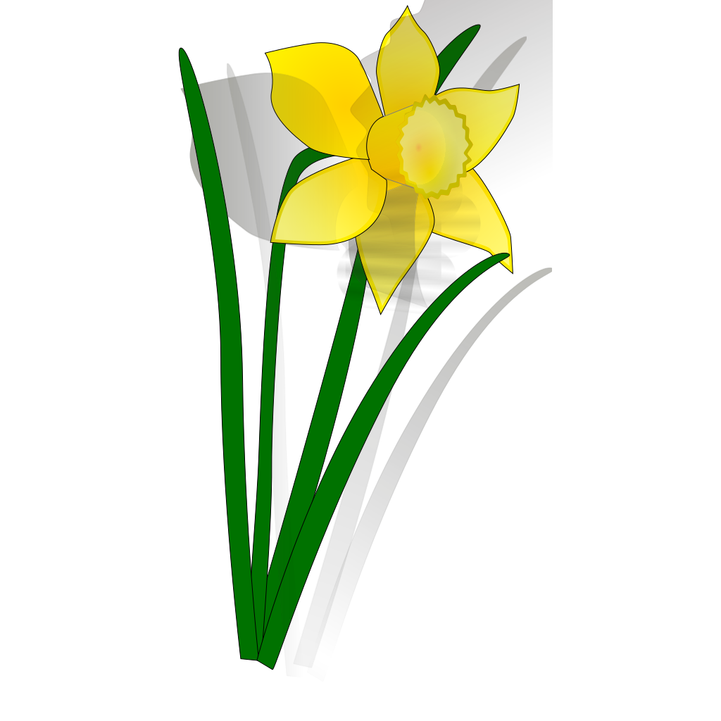 Daffodil flower SVG Clip arts