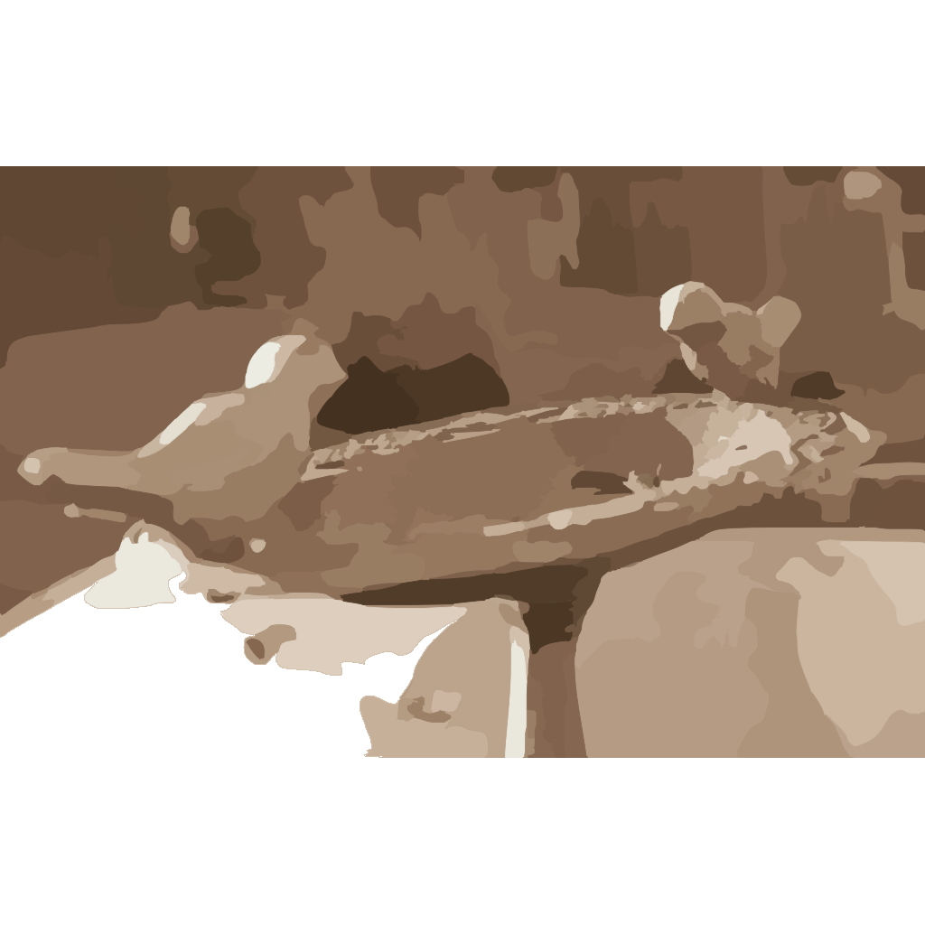 Blog Photo Birds SVG Clip arts