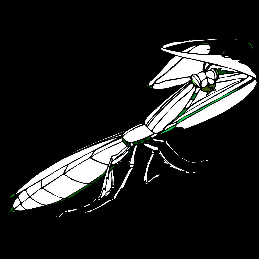 Praying Mantis SVG Clip arts