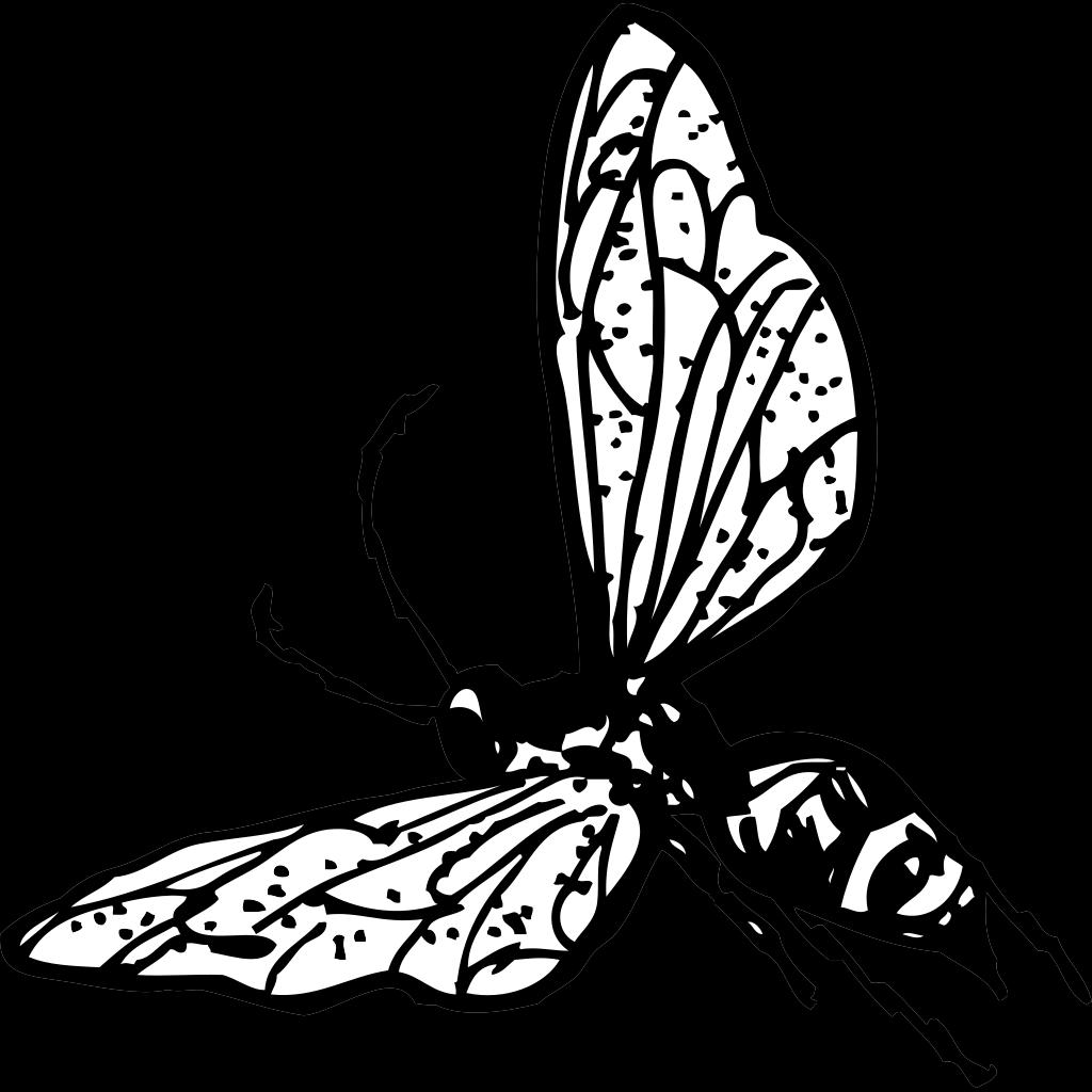 Flying Wasp 2 SVG Clip arts