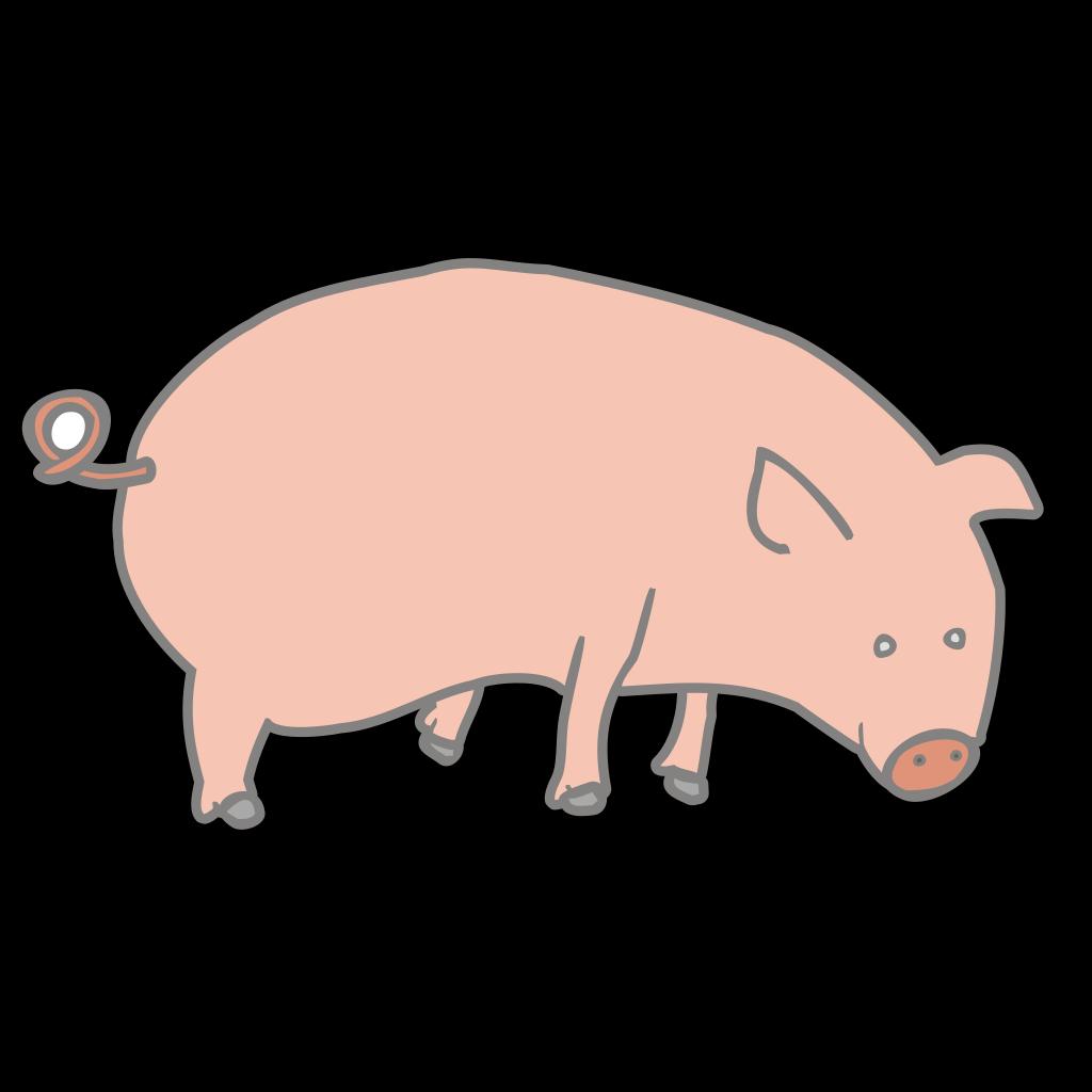 Pig 5 SVG Clip arts