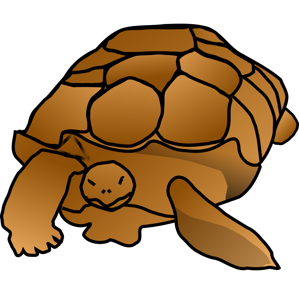 Turtle Cartoon SVG Clip arts