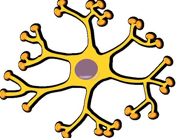 Neuron Interneuron SVG Clip arts