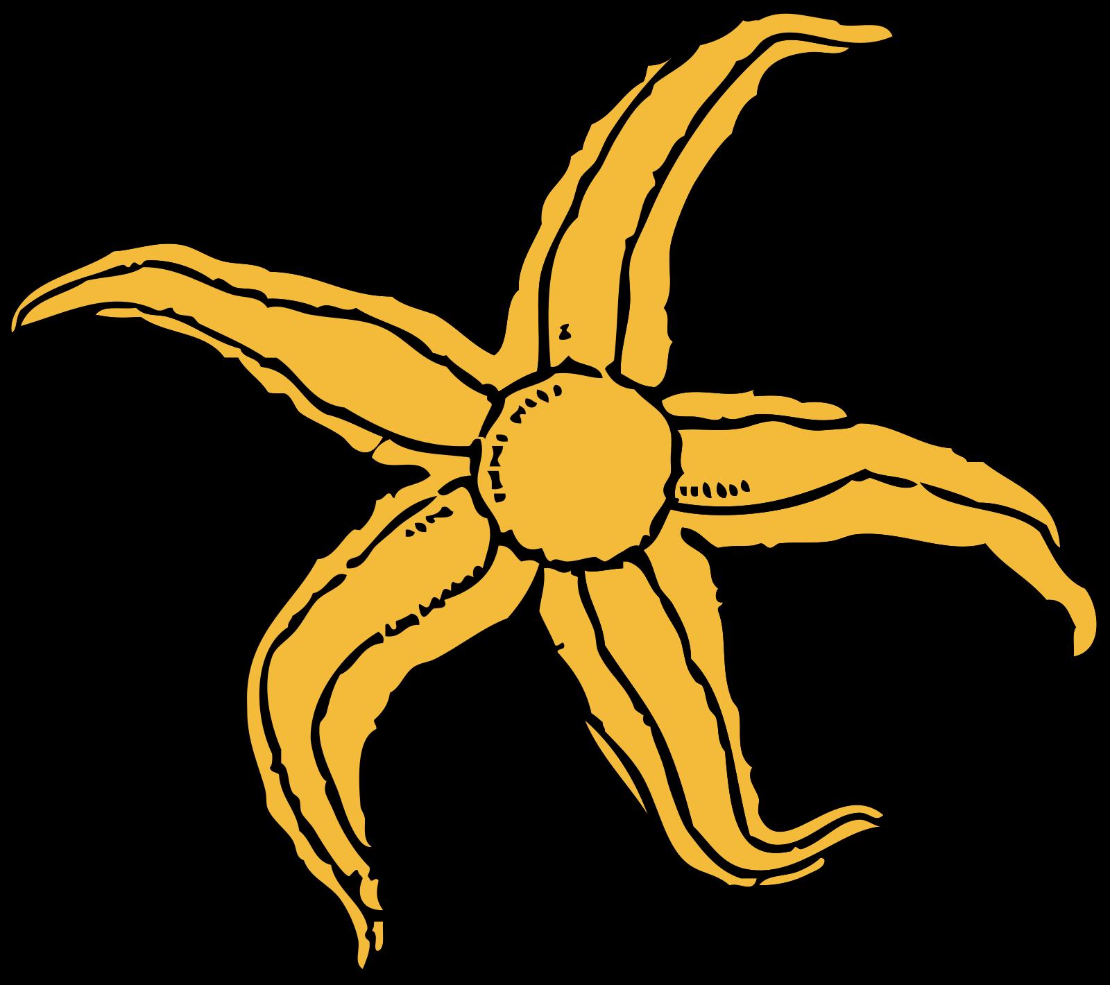 Starfish SVG Clip arts