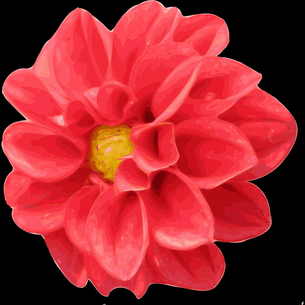 Dahlia Rose SVG Clip arts