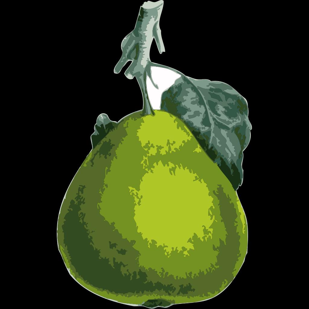 Pear SVG Clip arts