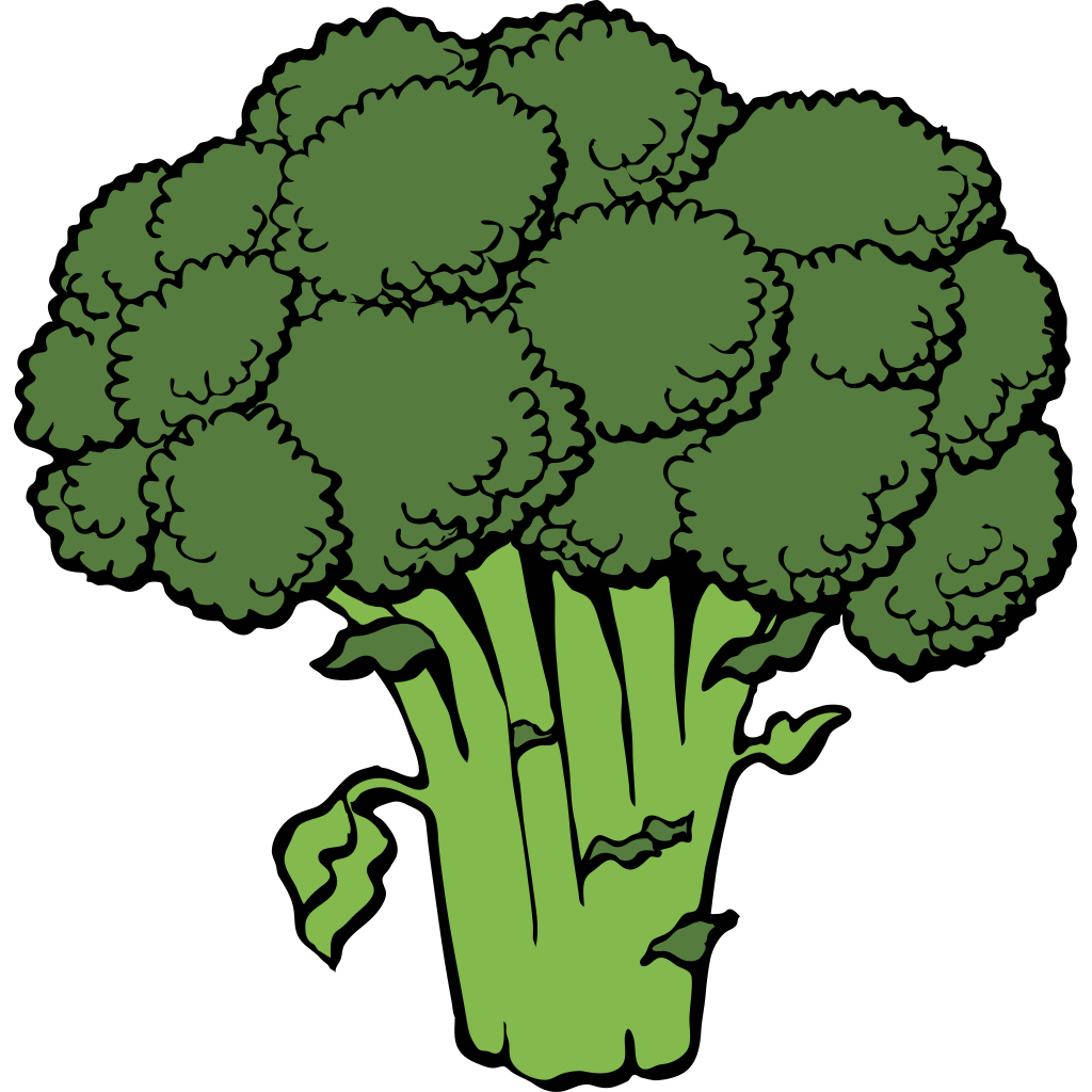 broccoli outline svg clip arts download download clip art png icon arts clip arts