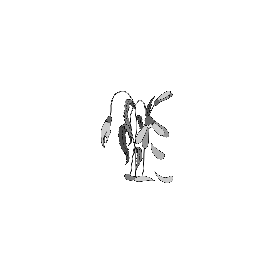 Wilted Flower SVG Clip arts