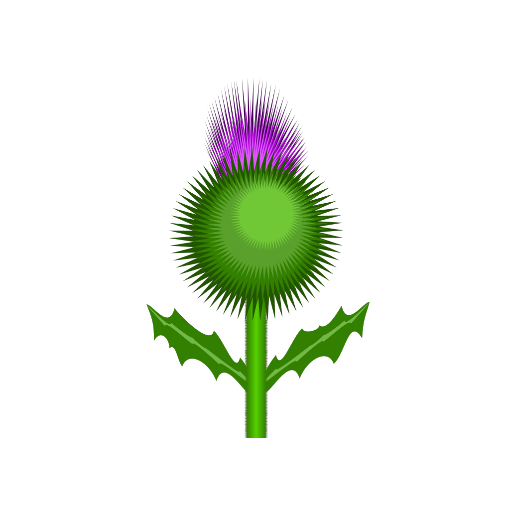 Scottish Thistle SVG Clip arts