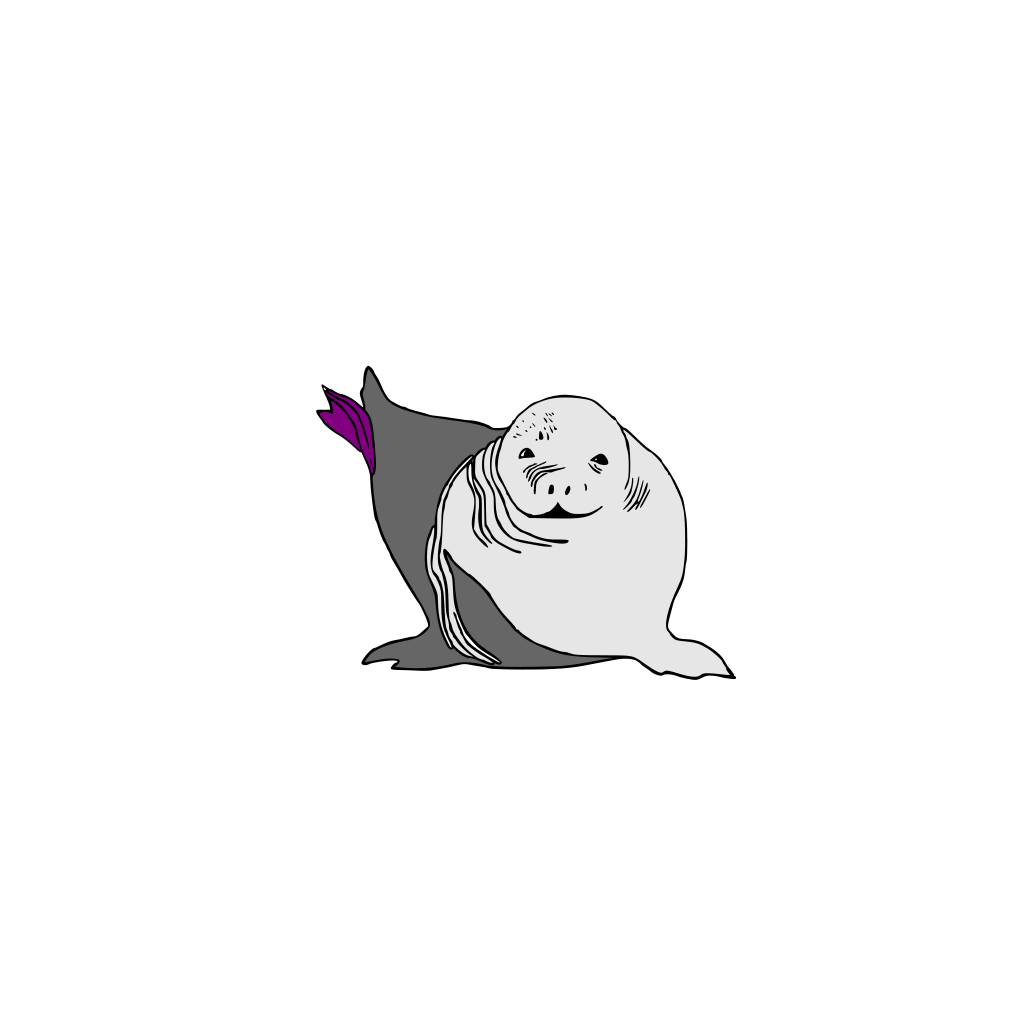 Baby Seal Baby Sea Lion SVG Clip arts