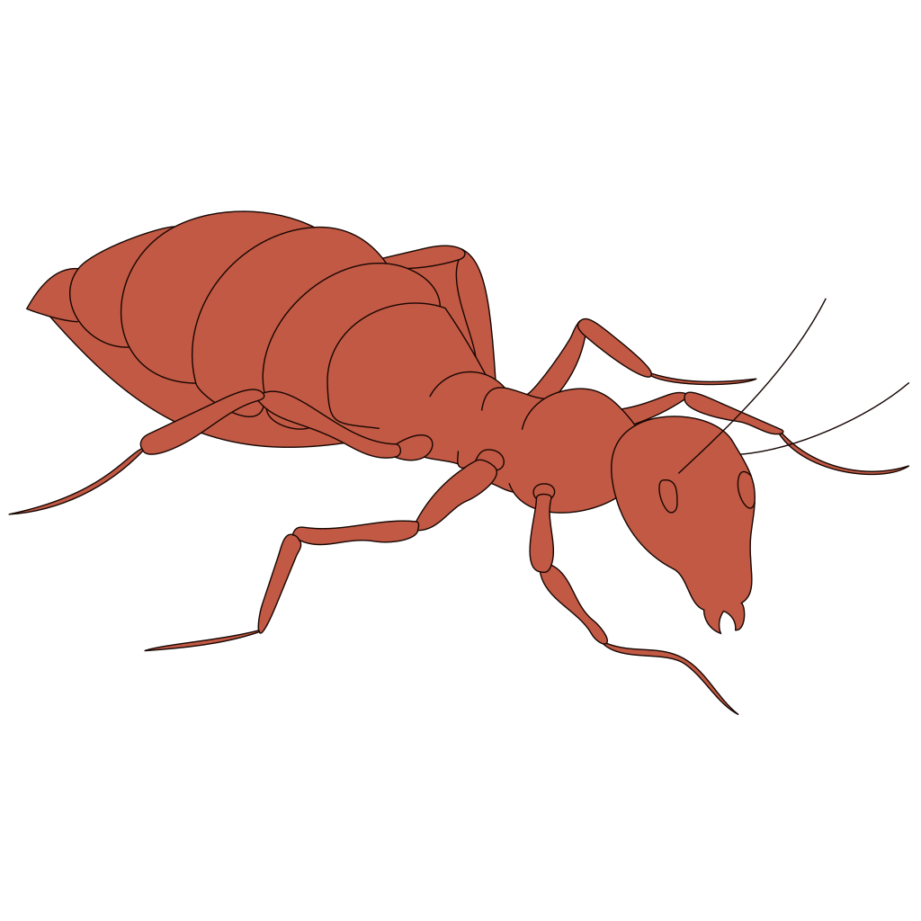 Walking Orange Ant SVG Clip arts