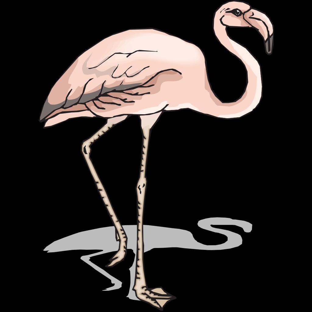Flamingo With Shadow SVG Clip arts