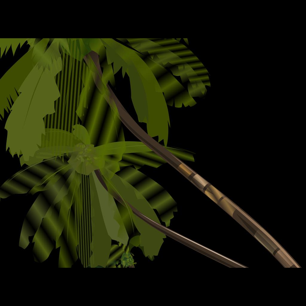 Vector Palm Trees SVG Clip arts
