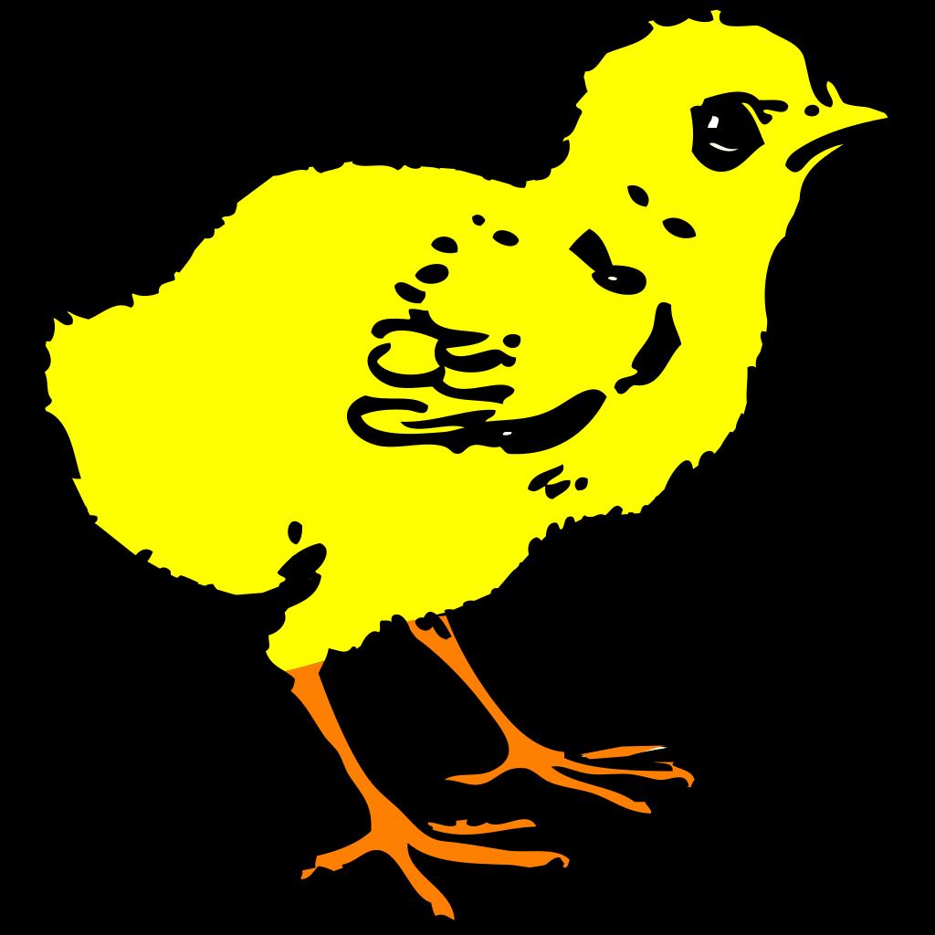 Chick In Color SVG Clip arts