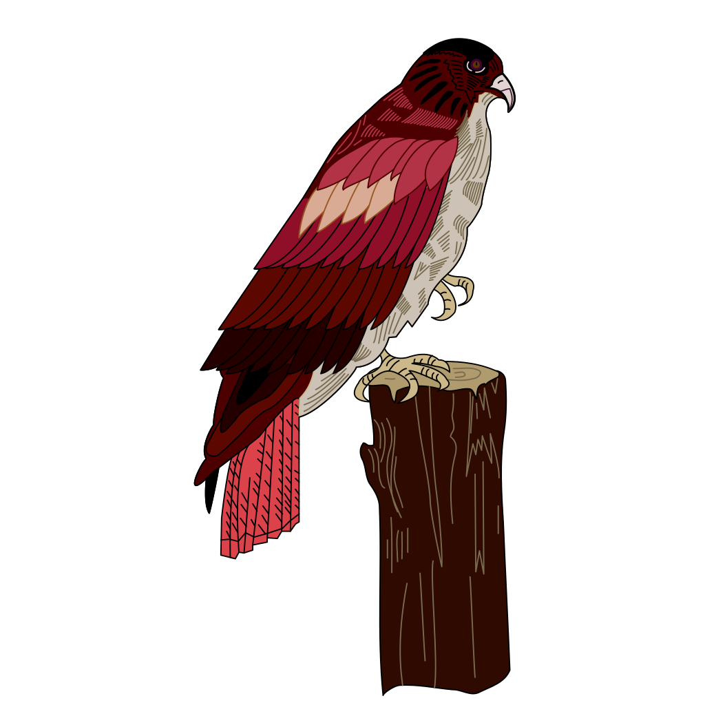 Hawk On A Stump SVG Clip arts