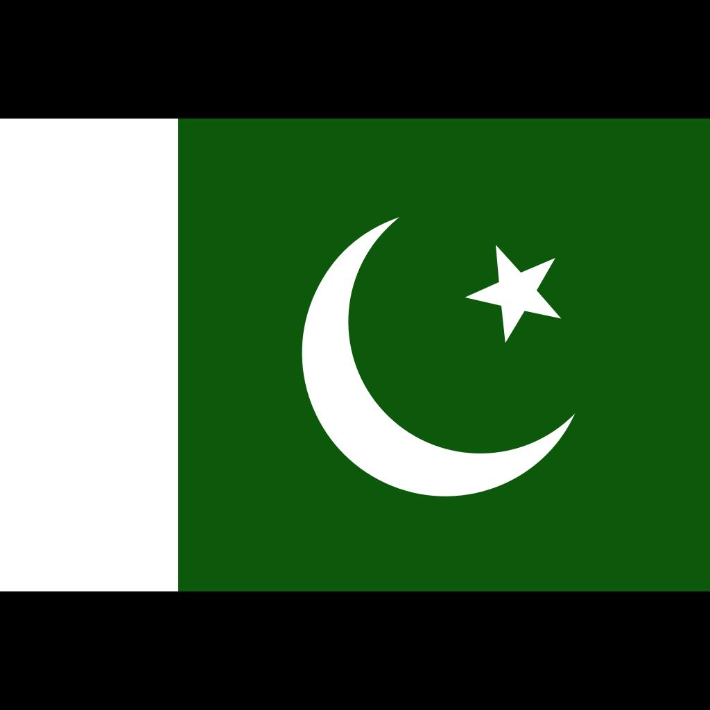 Flag Of Pakistan SVG Clip arts