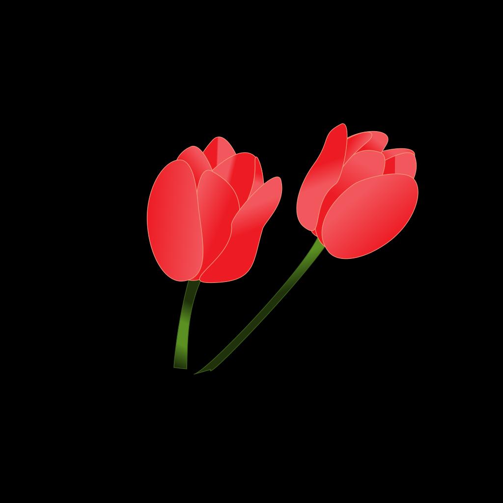 Red Tulip SVG Clip arts